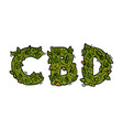 lettering design weed inscription cbd vector image