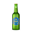 realistic detailed 3d glass beer bottle vector image