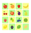 flat style fruit icon set vector image vector image