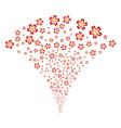 flower fountain stream vector image