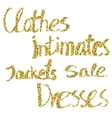 Glitter lettering Clothes intimates jackets vector image