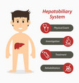 hepatobiliary system and medical line icon vector image vector image