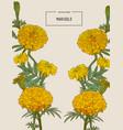 orange marigolds hand draw sketch vector image vector image