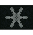 Ornament Snowflake4 vector image vector image