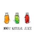set of bootles with fruit juice vector image vector image