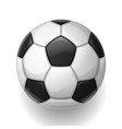 soccer ball on white background sports football vector image