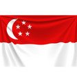 back flag singapore vector image vector image