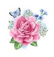 bouquet of apple tree flower gypsophila