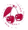 cherrys vector image vector image