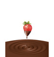 chocolate splash with strawberry vector image