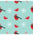 Christmas snowflake rowan rowanberry sorb vector image vector image