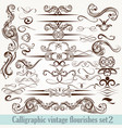 collection of calligraphic decorative flourishes vector image vector image