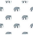 elephant pattern seamless vector image