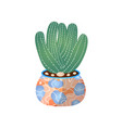 green cactus pot in home for indoor room vector image