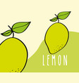 lemon fruit tropical fresh natural on colored vector image