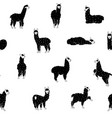 seamless pattern with llama vector image vector image