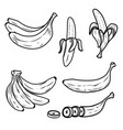 set of the fresh banana icons design elements for vector image vector image