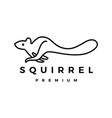 squirrel logo icon vector image vector image