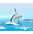 whales in northern ocean vector image