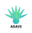 agave plant flower logo on white vector image