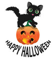 black cat and pumpkin for halloween3 vector image vector image
