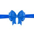 blue ribbon bow wrapping vector image vector image