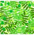 Floral pattern with leaves and foliage vector image