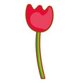 flowers and base cartoon vector image