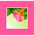 Hibiscus flower border on pink vector image vector image