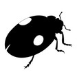 ladybird silhouette isolated on white background vector image vector image