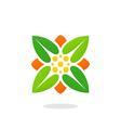 leaf square ecology herbal logo vector image