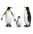 penguin realistic set vector image