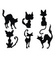 set black cats for halloween collection vector image vector image