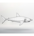 shark The structural grid of vector image vector image
