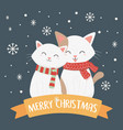 white cats with scarf snowflakes celebration merry vector image vector image