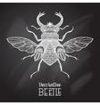 Chalkboard Beetle Decorative vector image vector image