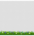 green grass with blue flowers transparent vector image