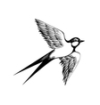 Hand drawn swallow Doodle shading style Engraving vector image vector image