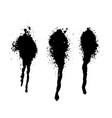 set of dark ink splashes vector image