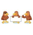 Hawk Mascot happy vector image