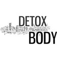 a full body detox text word cloud concept vector image vector image