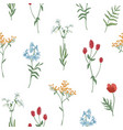 floral seamless pattern with wild blooming flowers vector image