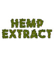 lettering weed inscription natural hemp extract vector image