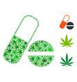 medication composition of marijuana vector image vector image