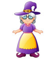 old witch cartoon vector image vector image