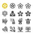 plumeria icon set