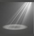 spotlight light effectlight beam isolated vector image vector image