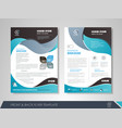 business brochure vector image vector image
