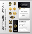 professional minimalist certificate with badge vector image vector image