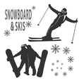 Snowboard and skies vector image vector image